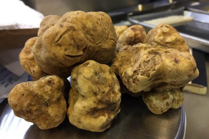 A Trunk Full Of Truffles